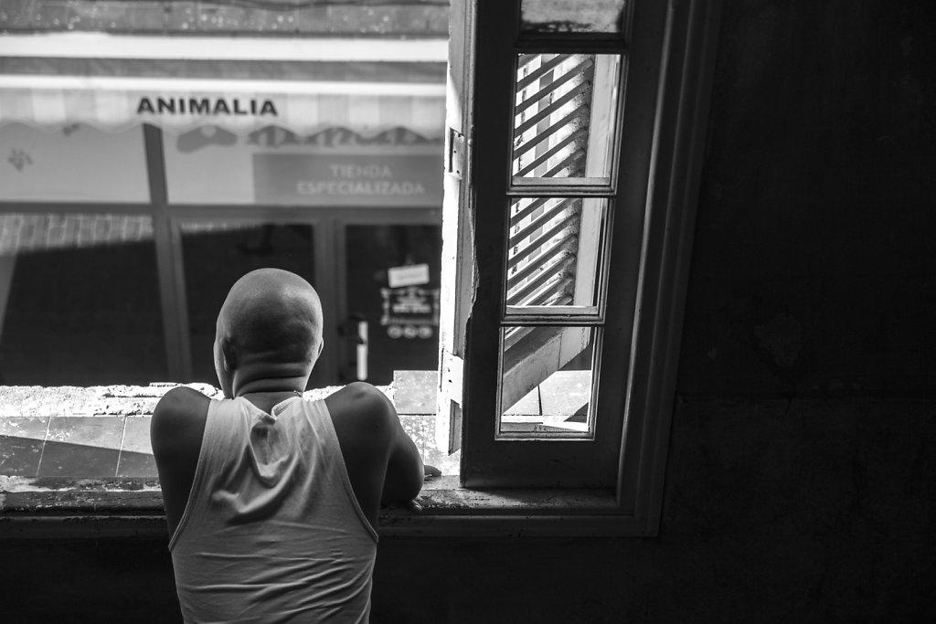 Watching Havana